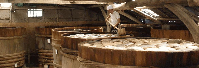 tamari-brewing.png